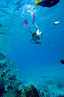Woman snorkeling in Red Sea, Giftun Island, Hurghada, Egypt