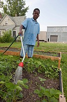 A boy waters a garden tended by children ages 5-11 in a program called Growing Healthy Kids, as part of the Earthworks Urban Garden, which grows food ...