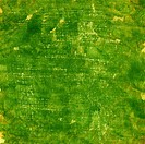 green grunge painted watercolor paper texture