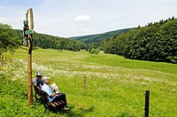 Hikers in the Oberes Vessertal valley, Biosphaerenreservat Vessertal-Thueringer Wald, biosphere reserve Vesser valley-Thuringian Forest, Thuringia, Ge...