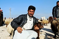 Men on a market for sheep and goats, Kafseh, Syria, Asia