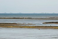 View over the Wadden Sea with rising water on the Hallig Langeness, Schleswig-Holstein Wadden Sea, North Friesland, Schleswig-Holstein, Germany, Europ...