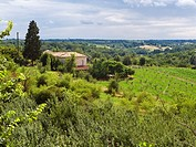 Tarn et Garonne countryside, France, Europe