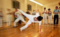 Capoeira Ginga Pura, Rode, Brazilian martial arts