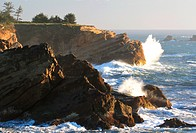 Cape Arago, USA, Oregon, Cape Arago State Park