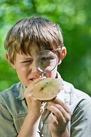 boy examines a mushroom