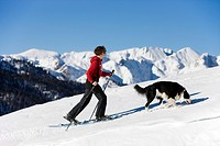 Hikerin with snow shoes with Border Collie, Plaetzwiese high plateau, Dolomites, South Tyrol, Italy, Europe