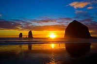A lone bird silhouetted against the sunset on Cannon Beach, Oregon, U S A
