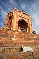 The Victory Gate in the Jami Masjid Mosque, Fatehpur Sikri, Uttar Pradesh, India, Asia