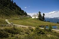 Stamser alpine pasture, Stams, Tyrol, Austria, Europe
