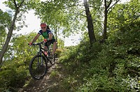 Mountain bike rider riding along a singletrail on Orenberg Mountain, Willingen, Hesse, Germany, Europe