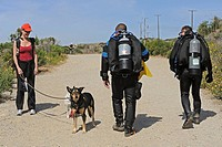 Scuba divers walk toward beach, Malibu, California, USA