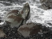 Rock formation, Playa del Medio near Playa Santiago, La Gomera, Canary Islands, Spain, Europe