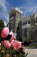 Colorful tulips in front of Casa Loma castle built in 1914 Major tourist attraction in Toronto Ontario Canada 2008