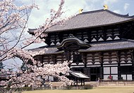 Nara, Japan. The Great Buddha Hall, Daibutsu_Den, of Todai_Ji is the world's largest wooden structure at 47.5 meters high