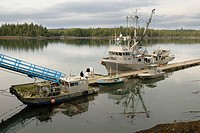 Fishing cutter and boats near Prince Rupert, British Columbia, Canada, North America