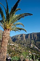 Valle Gran Rey, La Gomera, Canary Islands, Spain, Europe
