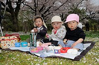 Japanese toddlers eating during the cherry blossom festivities at the Botanical Garden, Kyoto, Japan, Asia