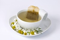 Cup of Scented Mayweed tea / Matricaria chamomilla, Matricaria recutita, Chamomilla recutita