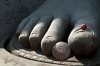 Shravanabelagola, Karnataka, India  Detail of granite foot with apple offering on toe  Shravanabelagola is a sacred temple city and pilgrimage site fo...