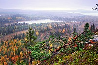 Scenary from hill Konttainen, Finland, Kuusamo