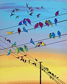Birds perching on telephone wire