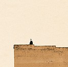 Man standing on wall