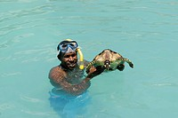 diver with sea turtle, Seychelles