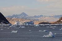 Icebergs in the Johan Petersen Fjord, East Greenland, Greenland