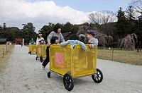 Nursery school teachers pushing mobile play pens with children of a childrens day care centre in the Kamigamo Shrine or Upper Kamo Shrine, Kyoto, Japa...