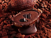Pieces of chocolate, melted chocolate, cocoa beans, cocoa, cacao fruit