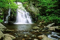 Spruce Flats Falls flows full in Spring, USA, Tennessee, Smoky Mountains National Park
