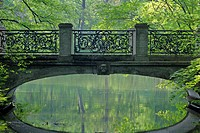in baroque style built bridge reflecting in brook in spring forest, Germany, Bavaria, Muenchen, Nymphenburger Schlosspark