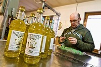 Alpe Distillery: Production of Genepy Hone - Aosta, Italy