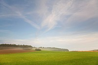 cultural landscape in morning light, Germany, Saxony, Vogtlaendische Schweiz