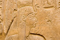 Hieroglyph of Ramses II, Luxor Temple, Luxor, Nile Valley, Egypt, Africa