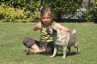 Pug Canis lupus f. familiaris, male dog, one year old, playing in the garden with a girl