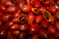 tree tomato Cyphomandra betacea, Cyphomandra crassicaulis, at the market, Madeira, Funchal