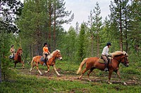 Horse riding at Hethes stables, Finland, Lapland