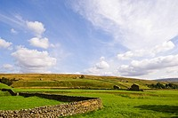 Stone Dykes and pasture in the Yorkshire Dales