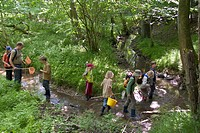 a group of children with dip nets at a forest creek