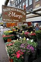 Flower stall, Albert Cuypmarkt, multicultural basar and open air markets, Albert Cuyp Straat, Amsterdam, the Netherlands, Europe