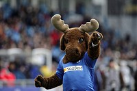 Hoffi the mascot of the german soccer club TSG Hoffenheim, Germany