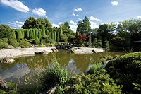 Germany, North Rhine_Westphalia, Bonn, Japanese garden with pond
