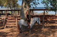 Young woman on a white horse at a corral on a Paraguayan farm, Gran Chaco, Paraguay, South America