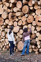 Children standing in front of a large pile of logs, trees cut down after a storm, Hesse, Germany
