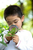 Boy holding magnifying glass on leaf and looking down