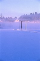 Snow covered street in the morning mist, Vaestergoetland, Sweden, Europe