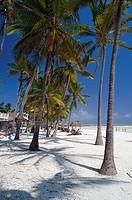 Palm beach under clouded sky, Bewejuu, Zanzibar Tanzania, Africa