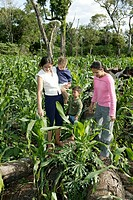 Women and children in a corn- and cassava field, freshly-cleared rainforest, Asunción, Paraguay, South America